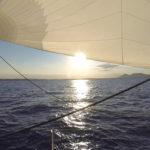 Comanegra navegant per la Costa Brava. Estiu 2016. Foto: Christian Gerloff
